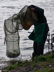 Извлечение садка с рыбой из воды