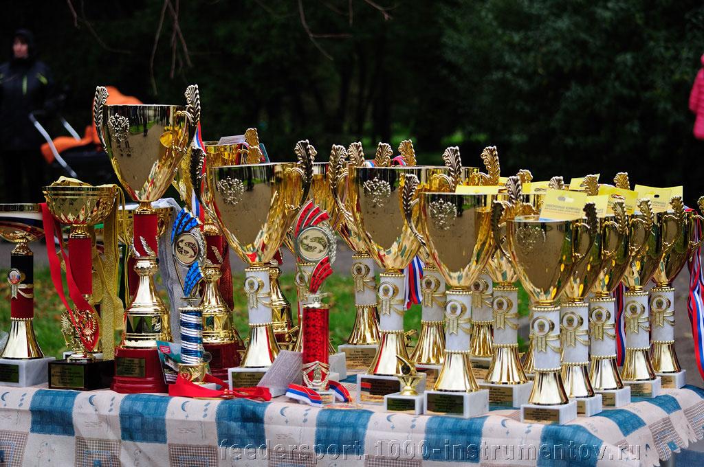 Кубки и медали на соревнованиях Чемпионат России по фидеру 2013