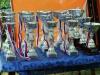 Кубки и медали на Кубке Алгоритм 2013