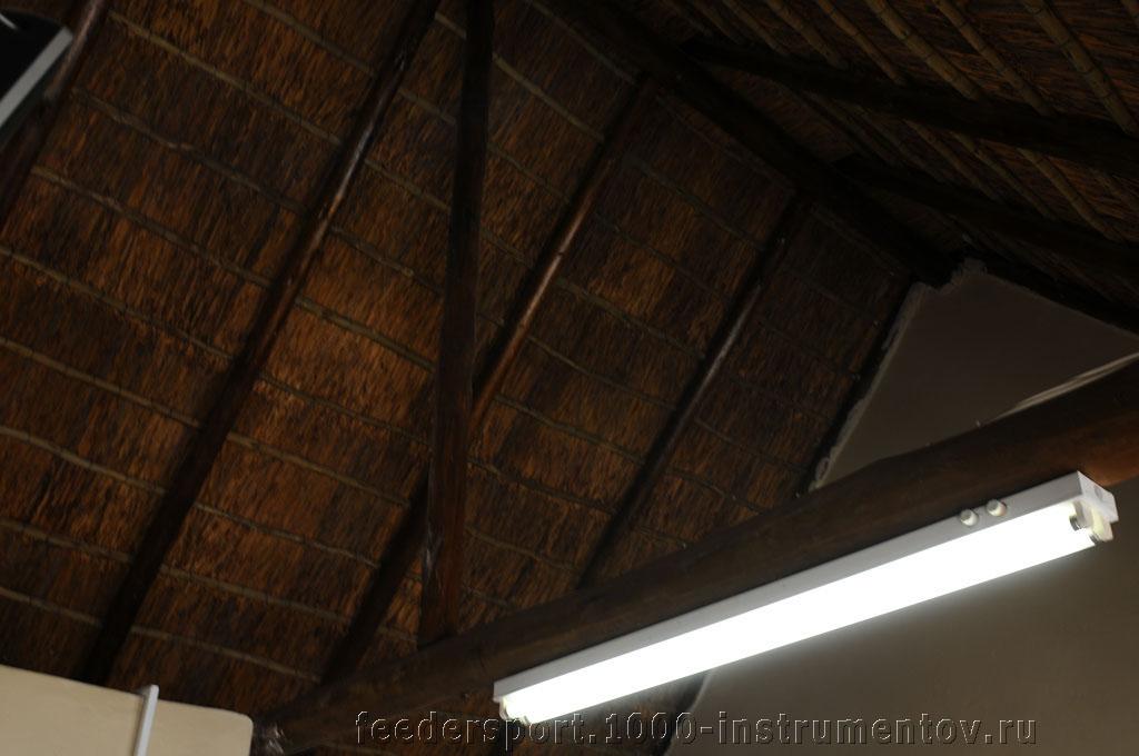 Соломенная крыша в шале, на ЧМ в ЮАР 2013
