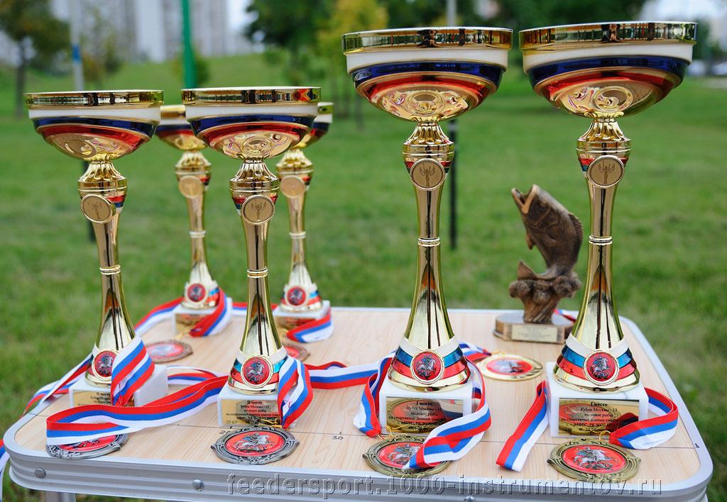 Кубки и медали на соревнованиях Кубок Москвы 2013, тандем