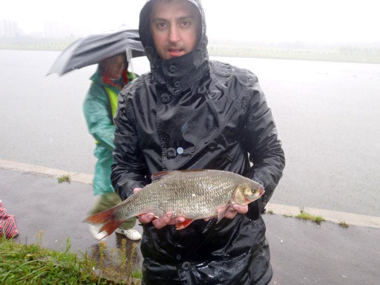 Самую крупную рыбу - плотву на соревнованиях Кубок Москвы 2013 поймал Фролов И.В.