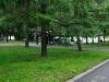 В марьинском парке на соревнованиях Кубок Москвы 2013