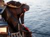 Выпуск рыбы обратно в водоём после второго тура на соревнованиях ТОП-10 тандем 2013