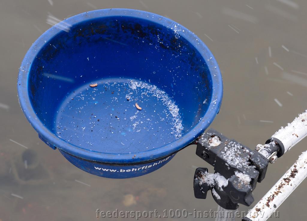 Рыбы сожрали всю прикормку, ничего не оставили :)